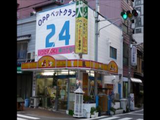 image1 (16)